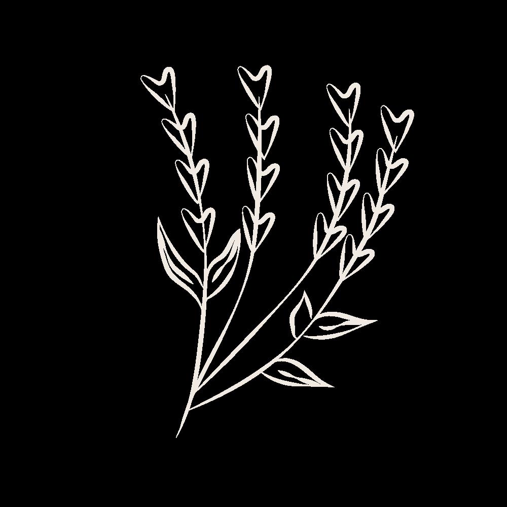 Blumen freigestellt als Grafikelement bei Lara HAIR & MAKE-UP